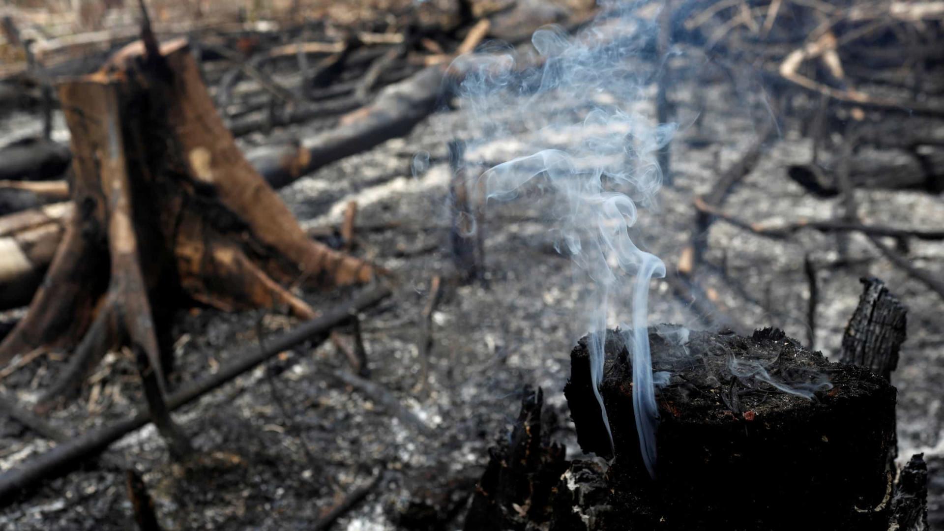 Incêndio atinge 10 mil metros quadrados de reserva biológica no Rio
