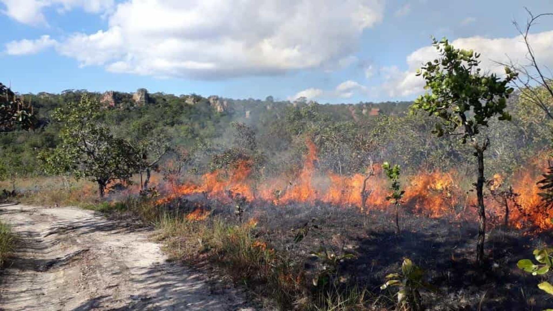Fogo consome 13% do Parque da Chapada dos Guimarães