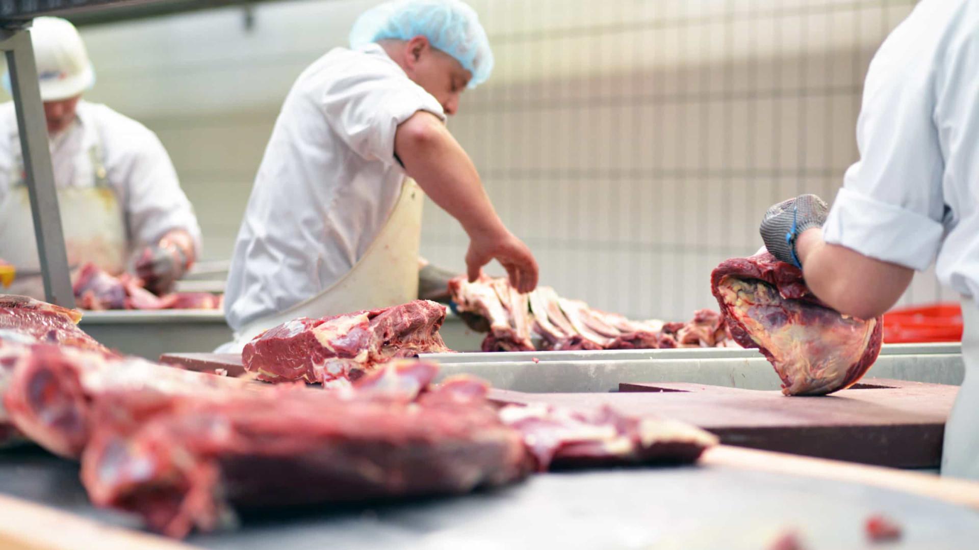 Abate de bovinos e suínos cresce no segundo trimestre no país