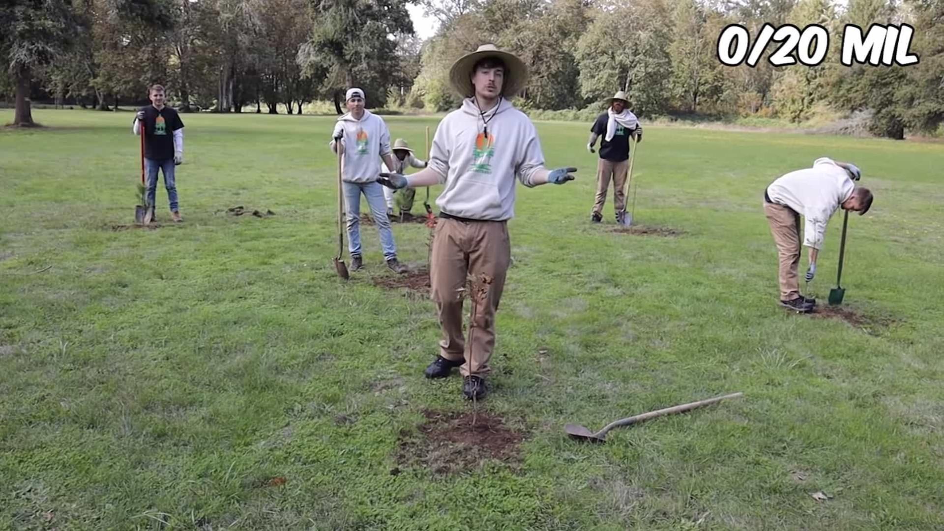 Youtuber cria iniciativa para plantar 20 milhões de árvores