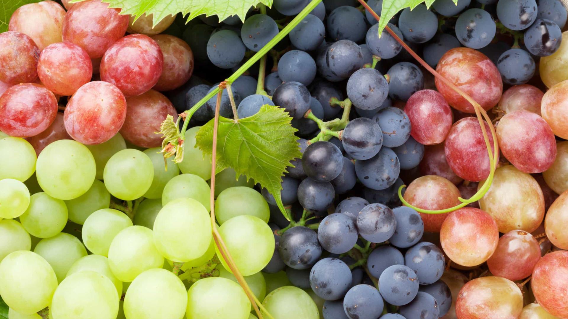 Esqueça as calorias. Saiba quais são os benefícios das uvas