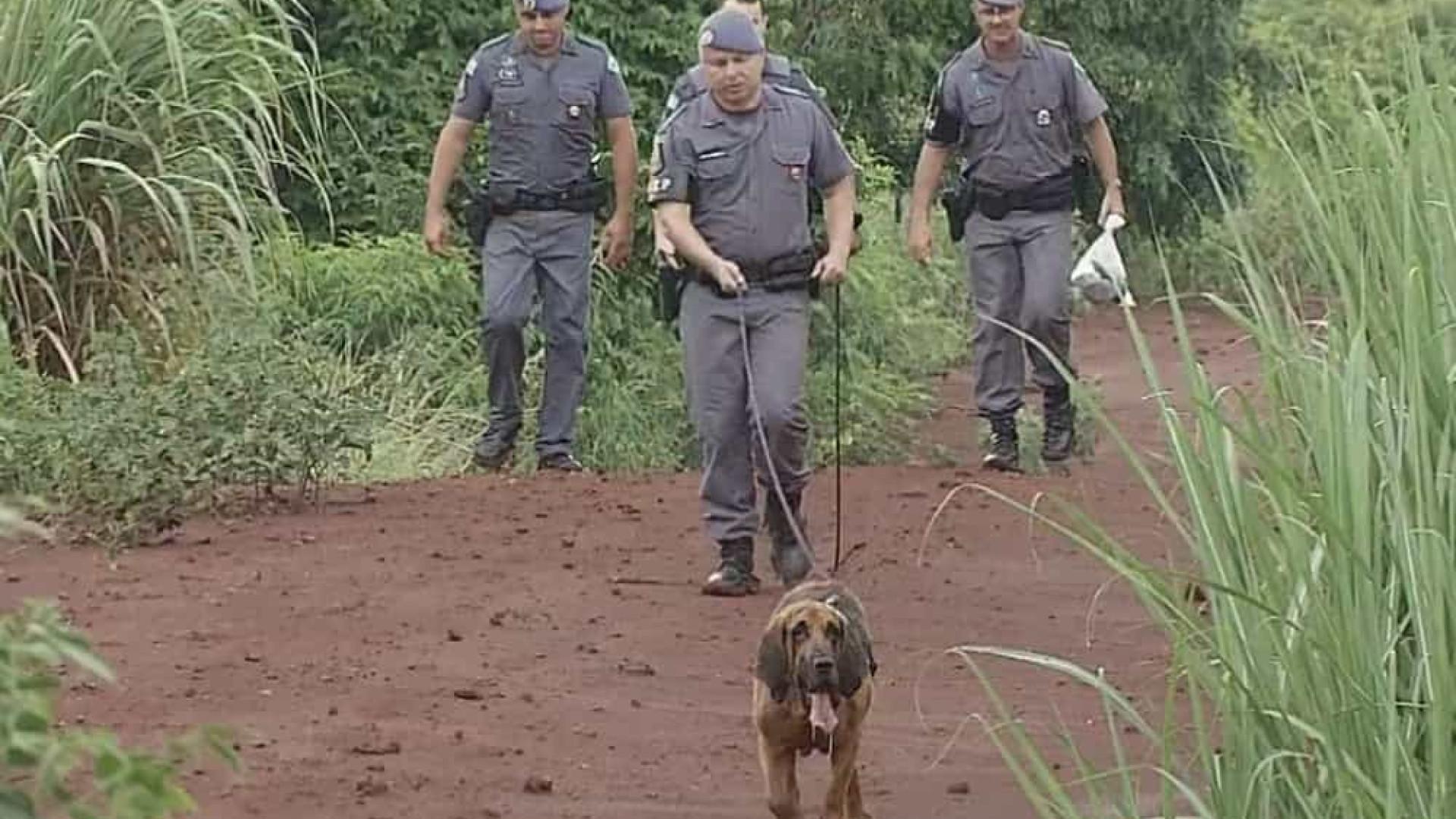 Menina de 8 anos que desapareceu de parquinho em SP é encontrada morta