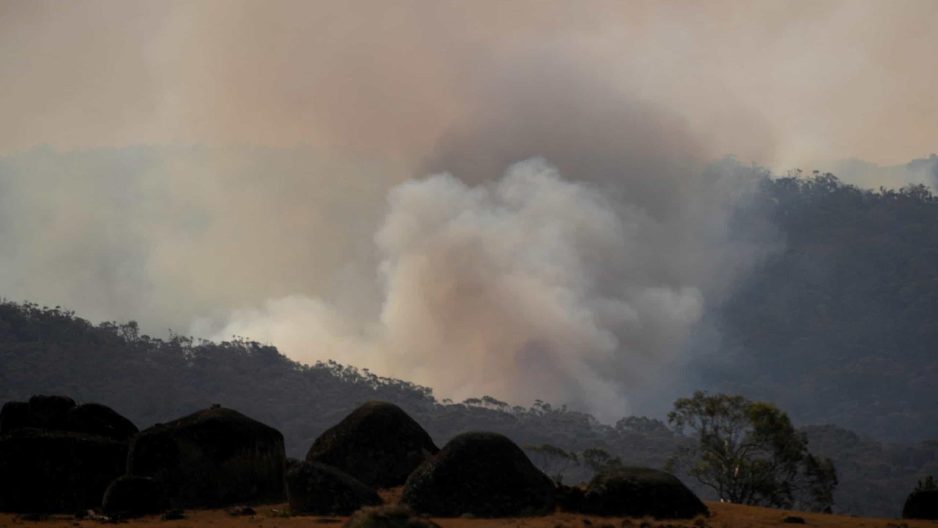 Fogo atinge bosque e serra, que queimam há seis dias no interior de SP