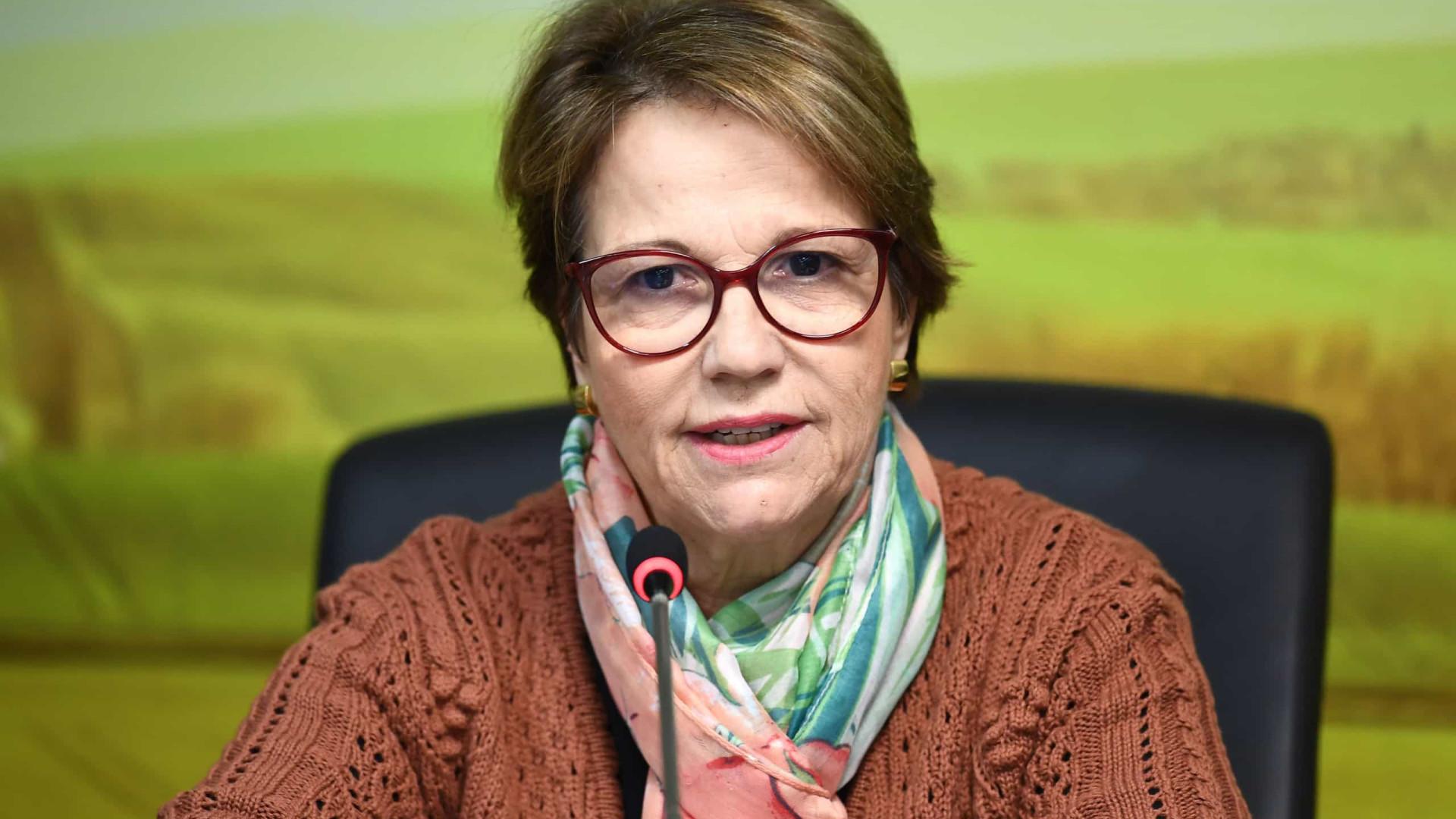 EUA reabrem mercado para carne bovina não processada do Brasil