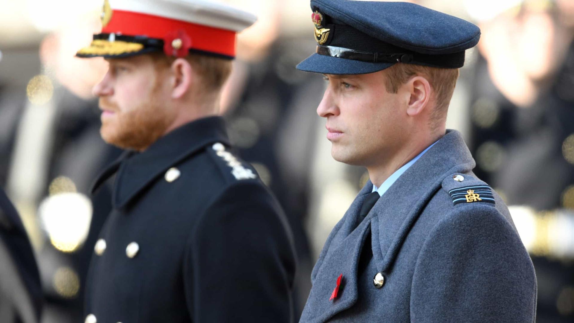 William e Harry recebem notícias tristes sobre homenagem à mãe