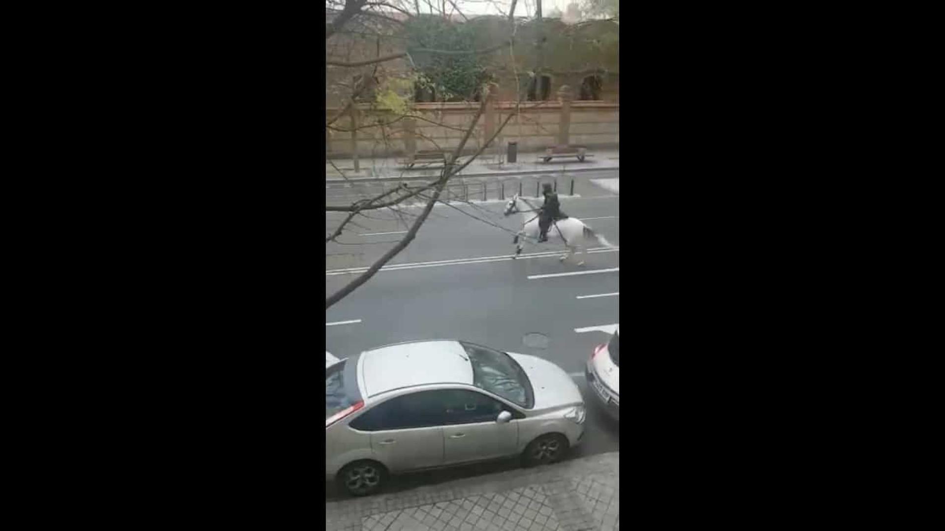 Madrid: Polícia a cavalo persegue ciclista que ignorou aviso