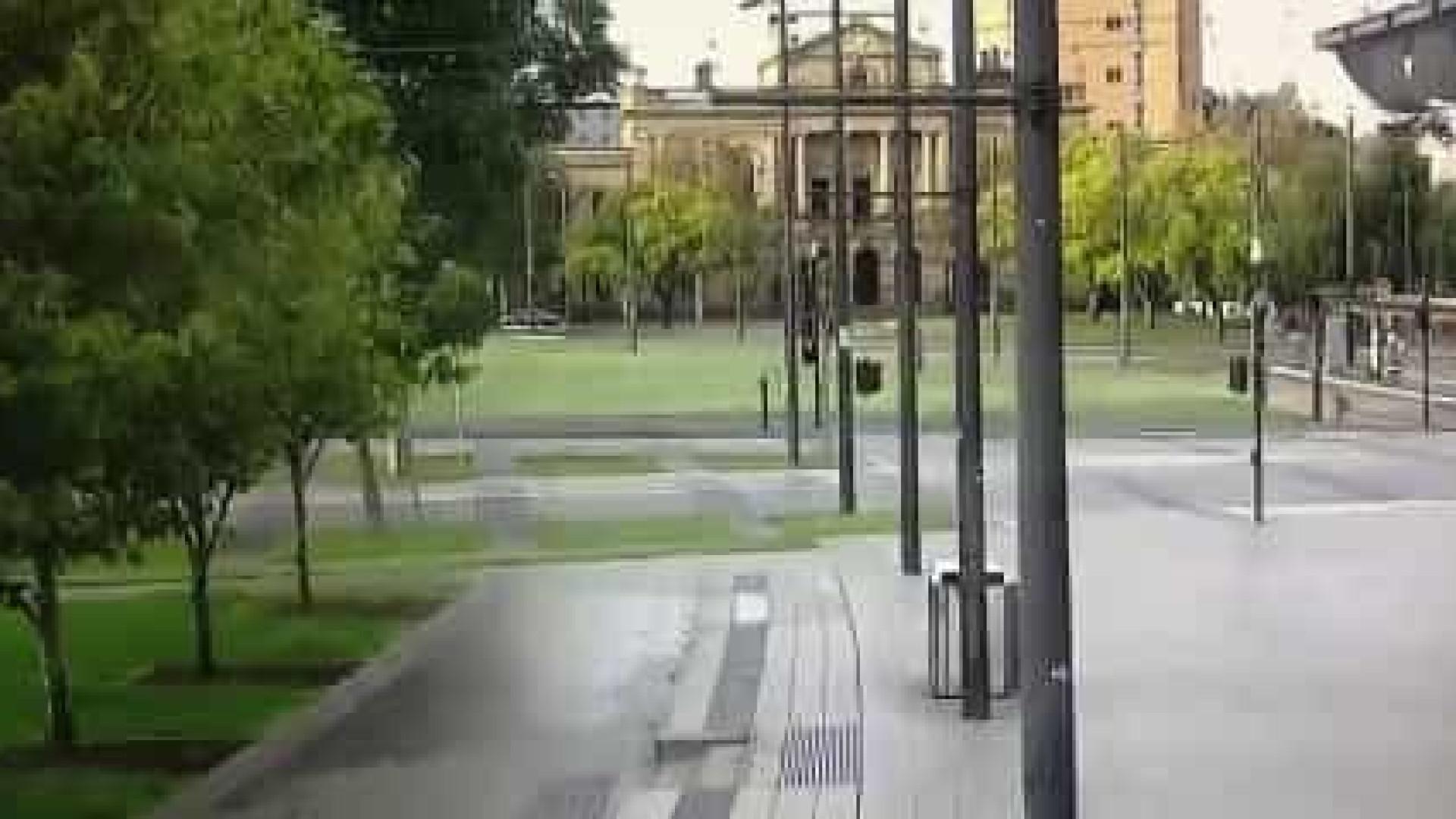Canguru apanhado 'acelerando' nas ruas desertas da Austrália