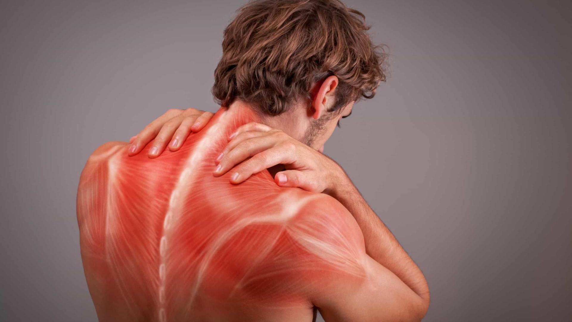 Investigadores estudam novas terapias para tratar lesão muscular