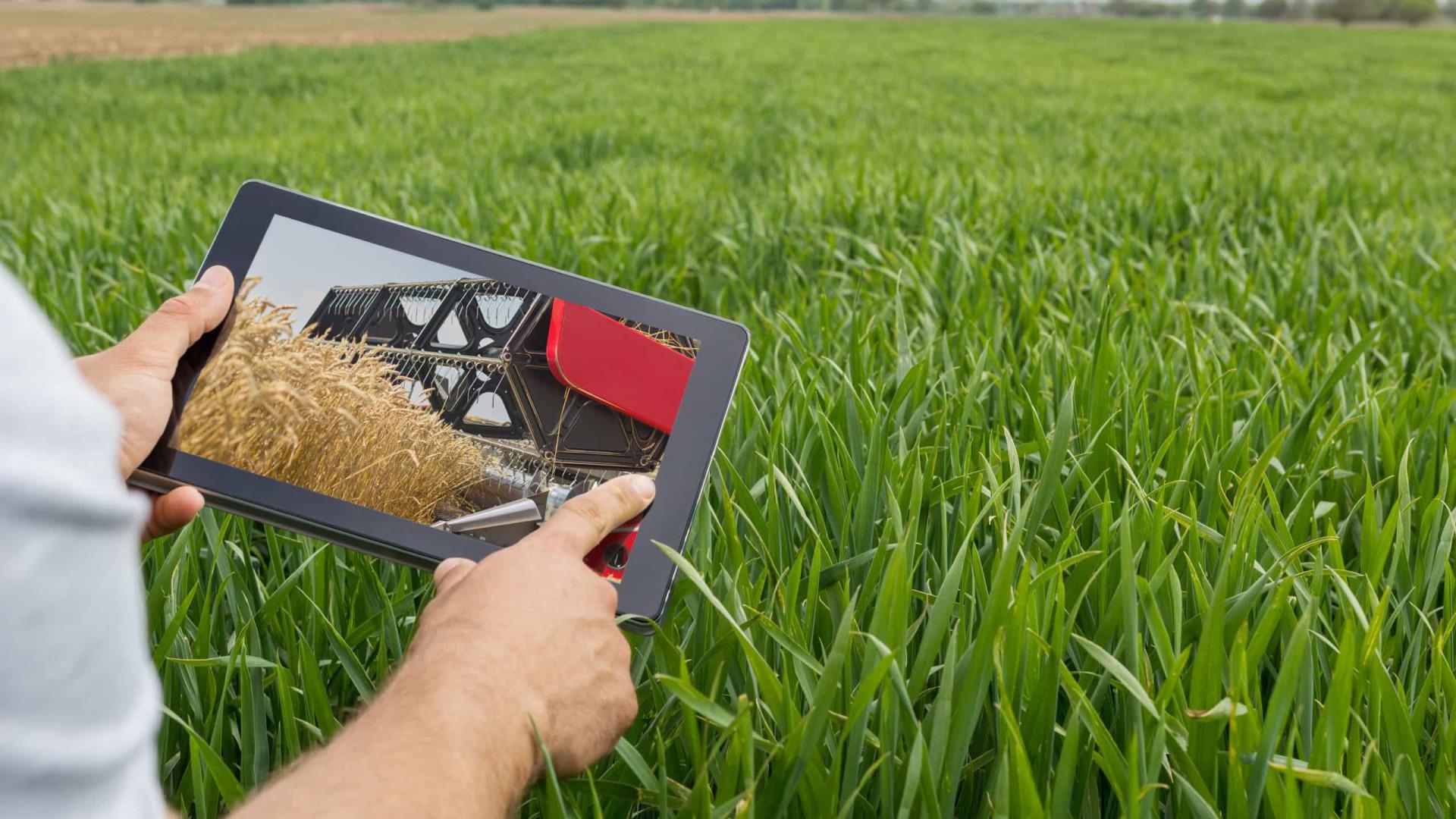 Com receita recorde, agronegócio aumenta participação no PIB do País