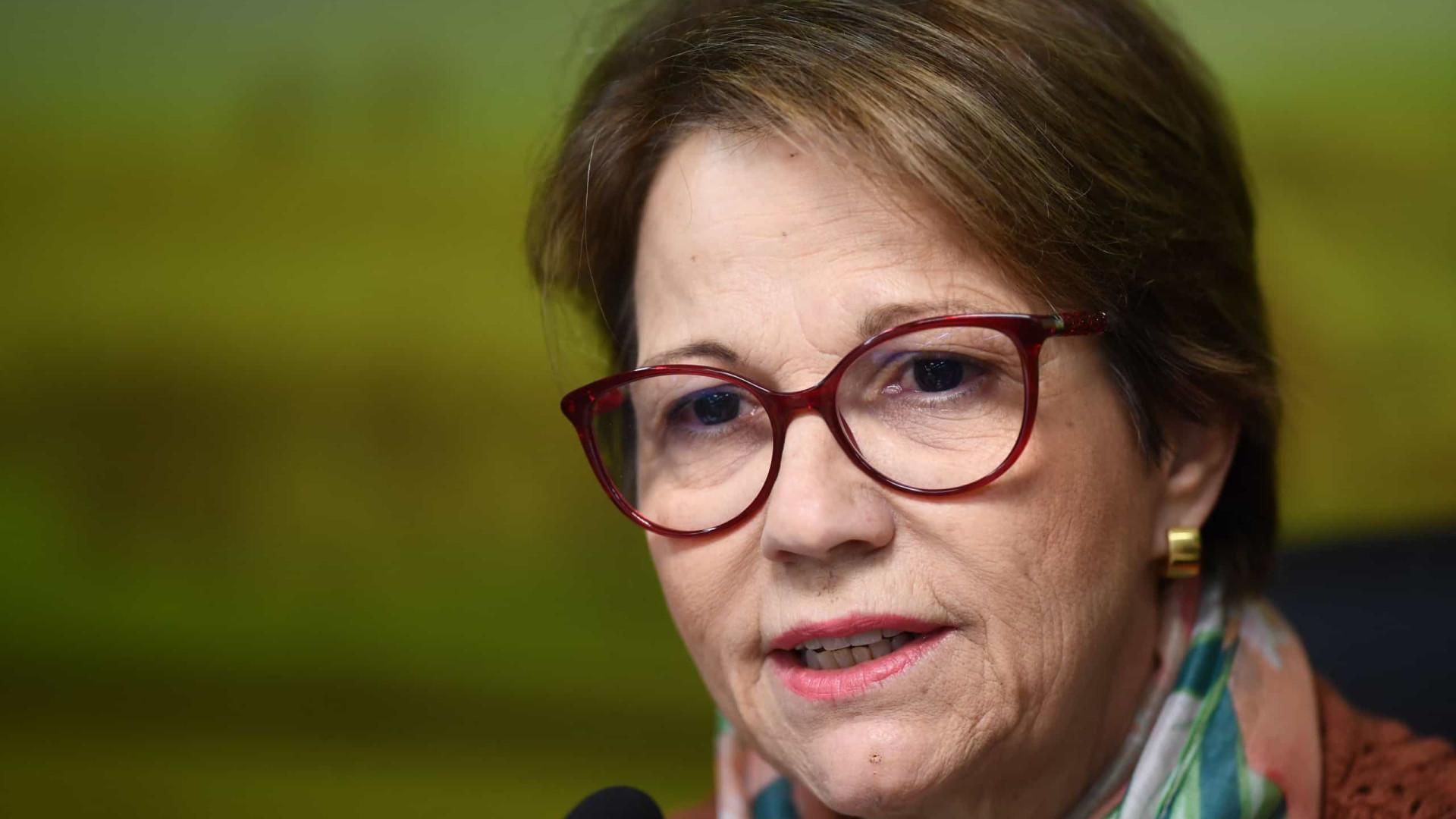 PL de regularização fundiária dará mais controle sobre Amazônia
