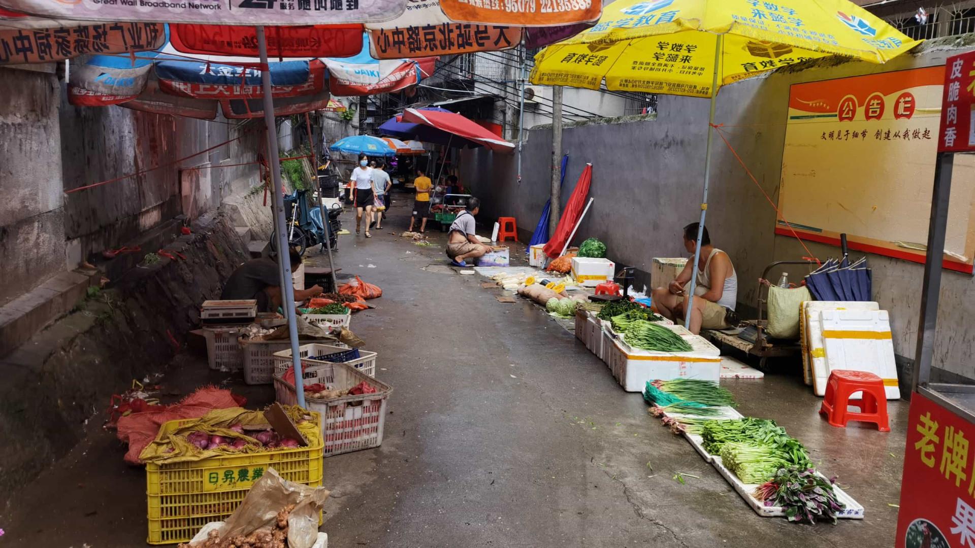 China vai encerrar gradualmente todos os mercados de aves vivas