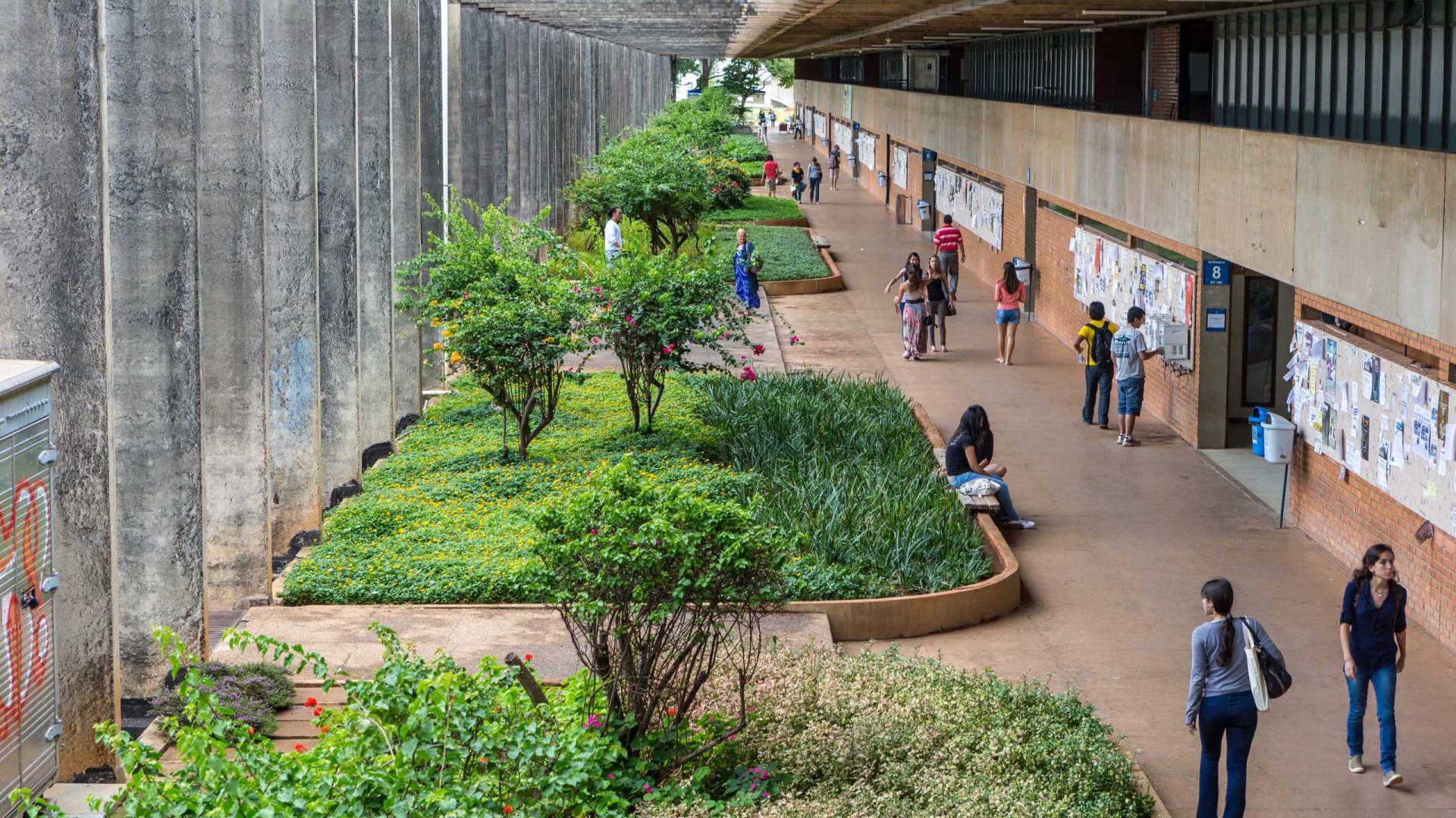 Estágios remotos comprometem a formação prática de universitários