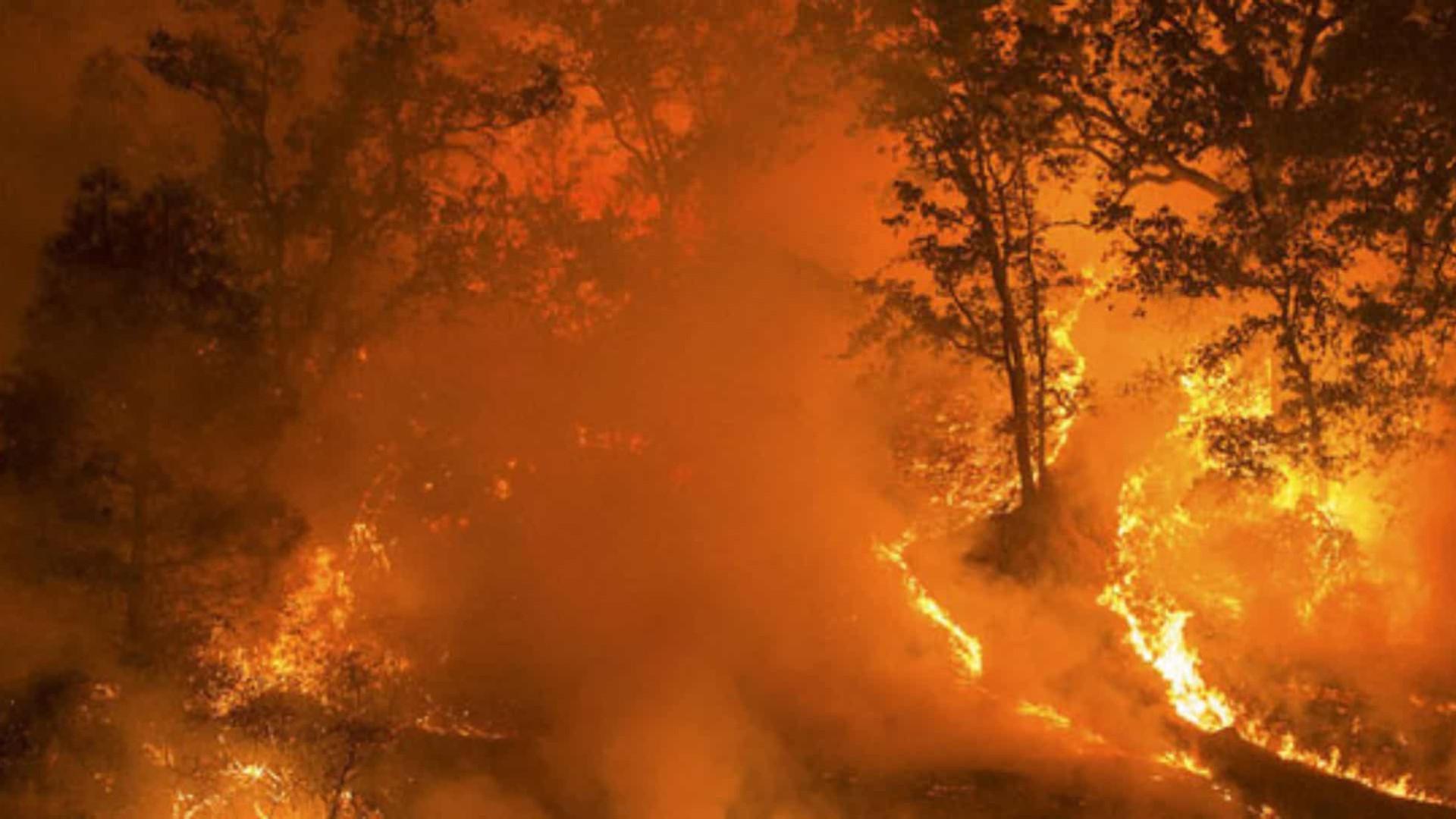 Em reação a operação contra mineração ilegal, garimpeiros incendeiam aldeia no PA