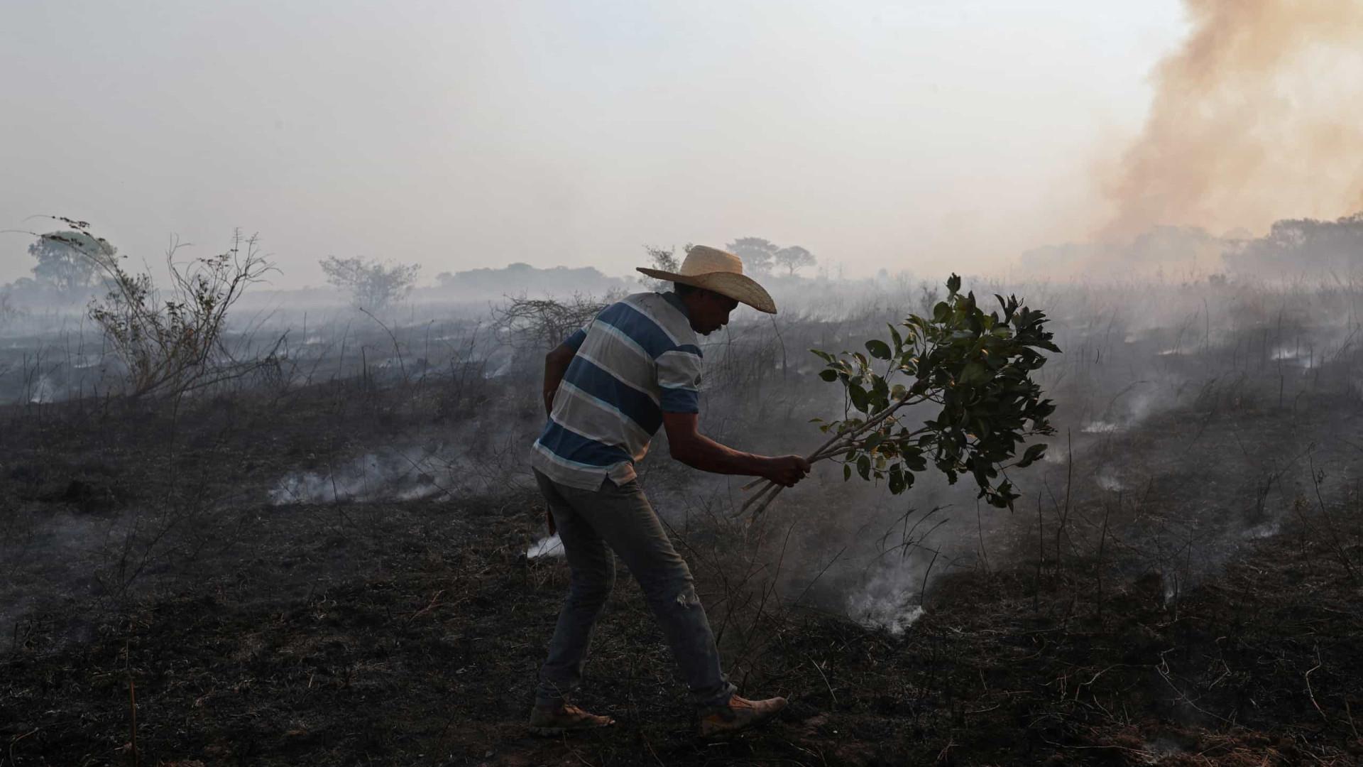 'Não pode ser acidente', diz delegado da PF sobre incêndios no Pantanal