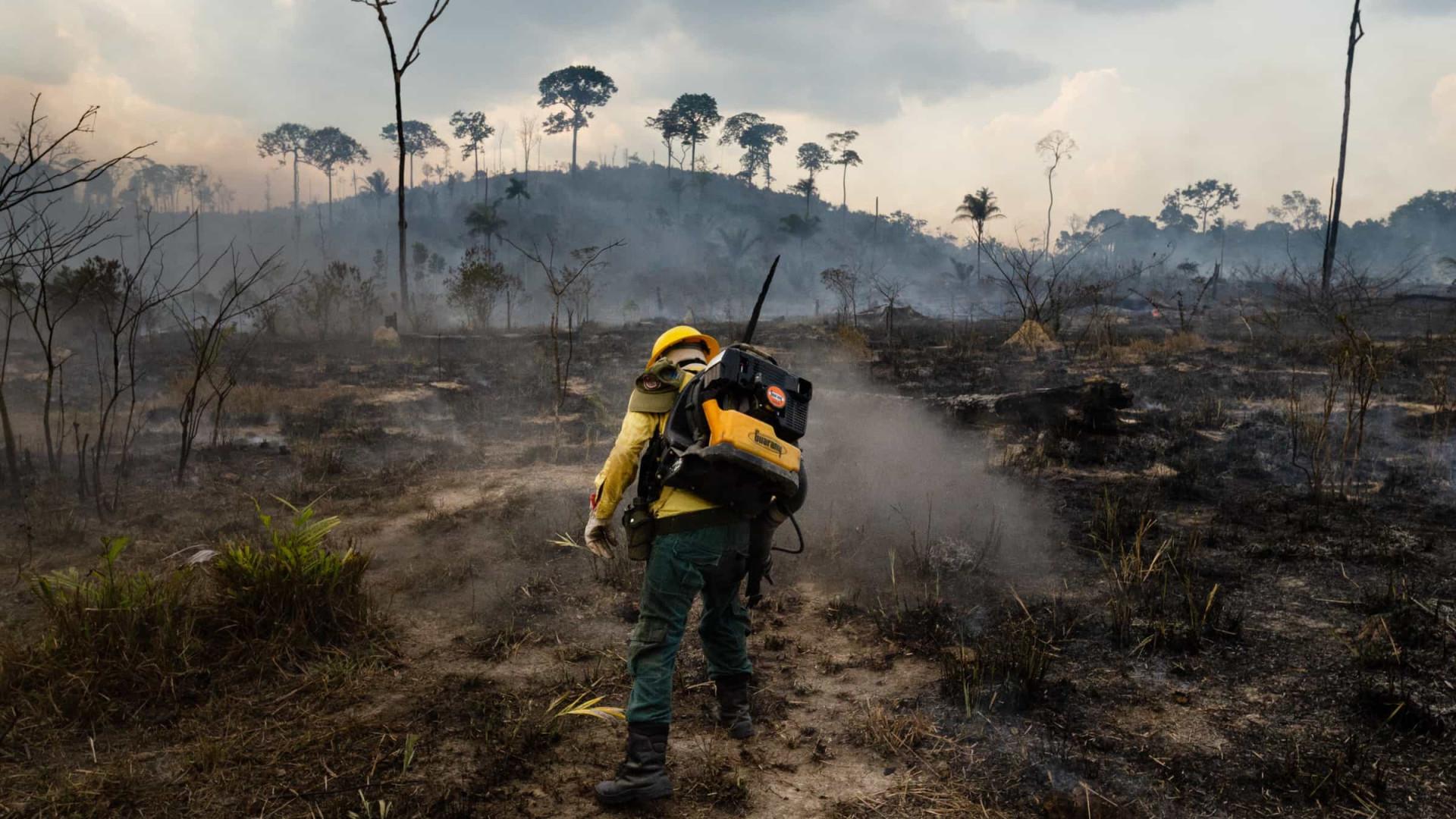 Com promessa de verba, Ibama manda agentes voltarem às atividades contra incêndio