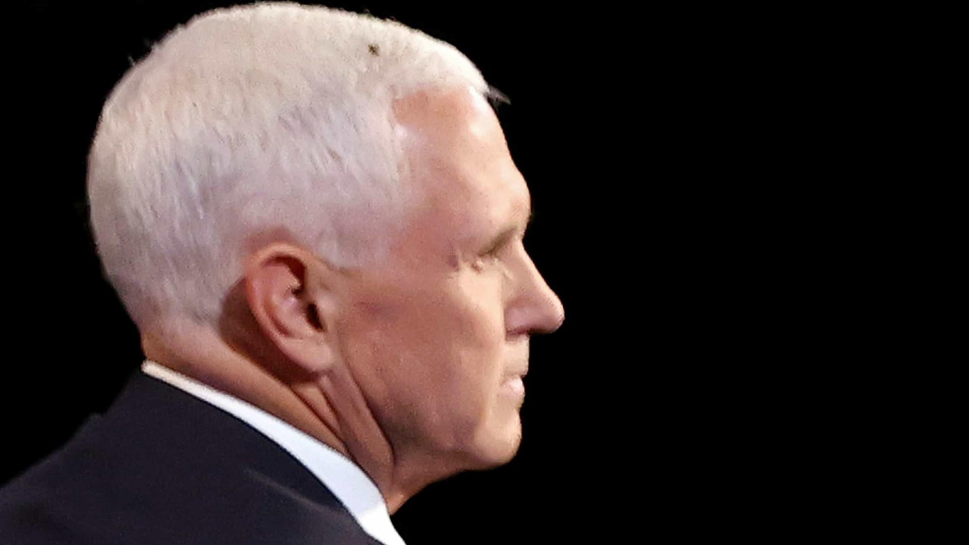 Mosca que pousou em Mike Pence tem página com 100 mil seguidores