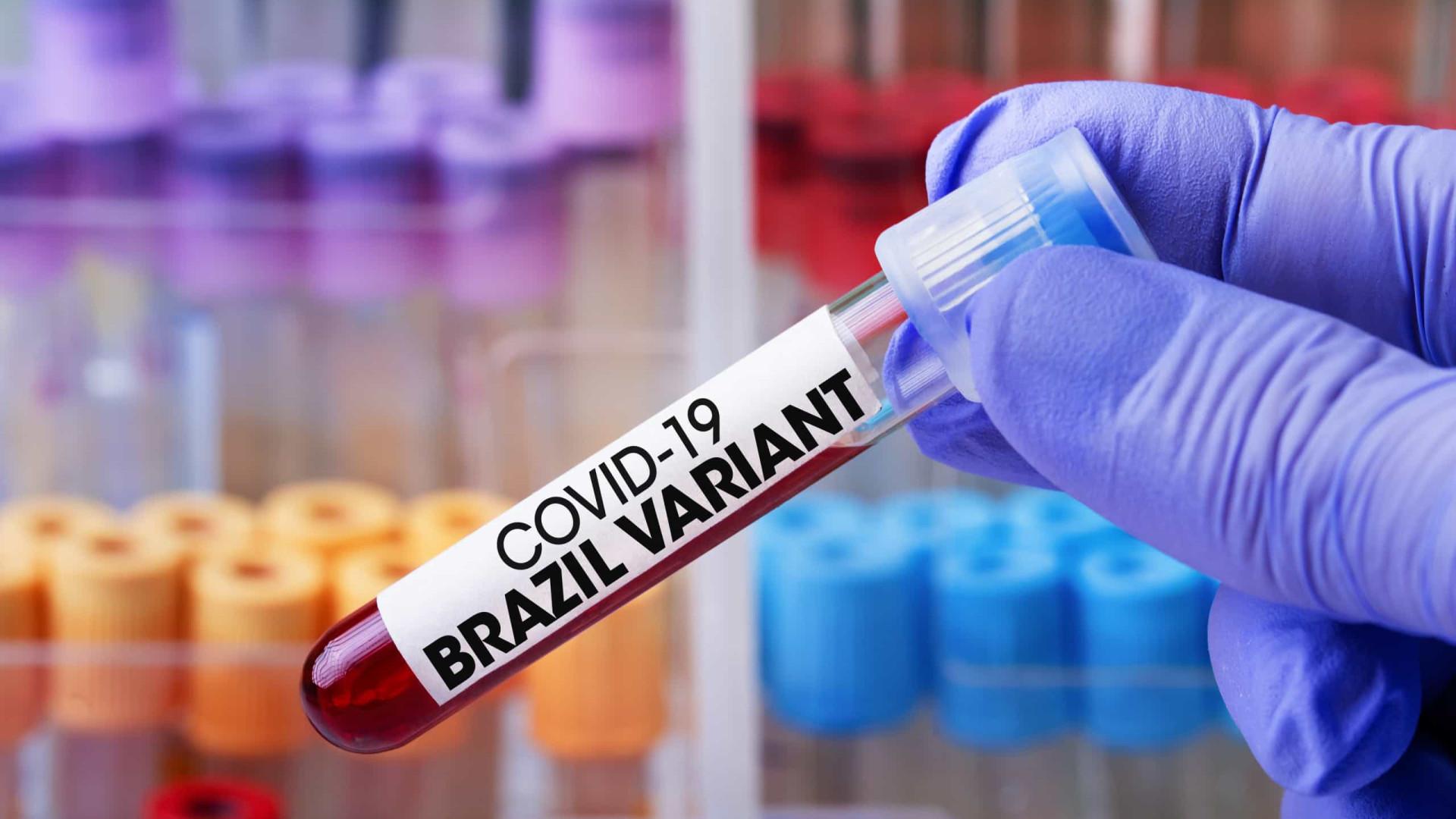 Variante brasileira pode driblar Coronavac, sugere estudo