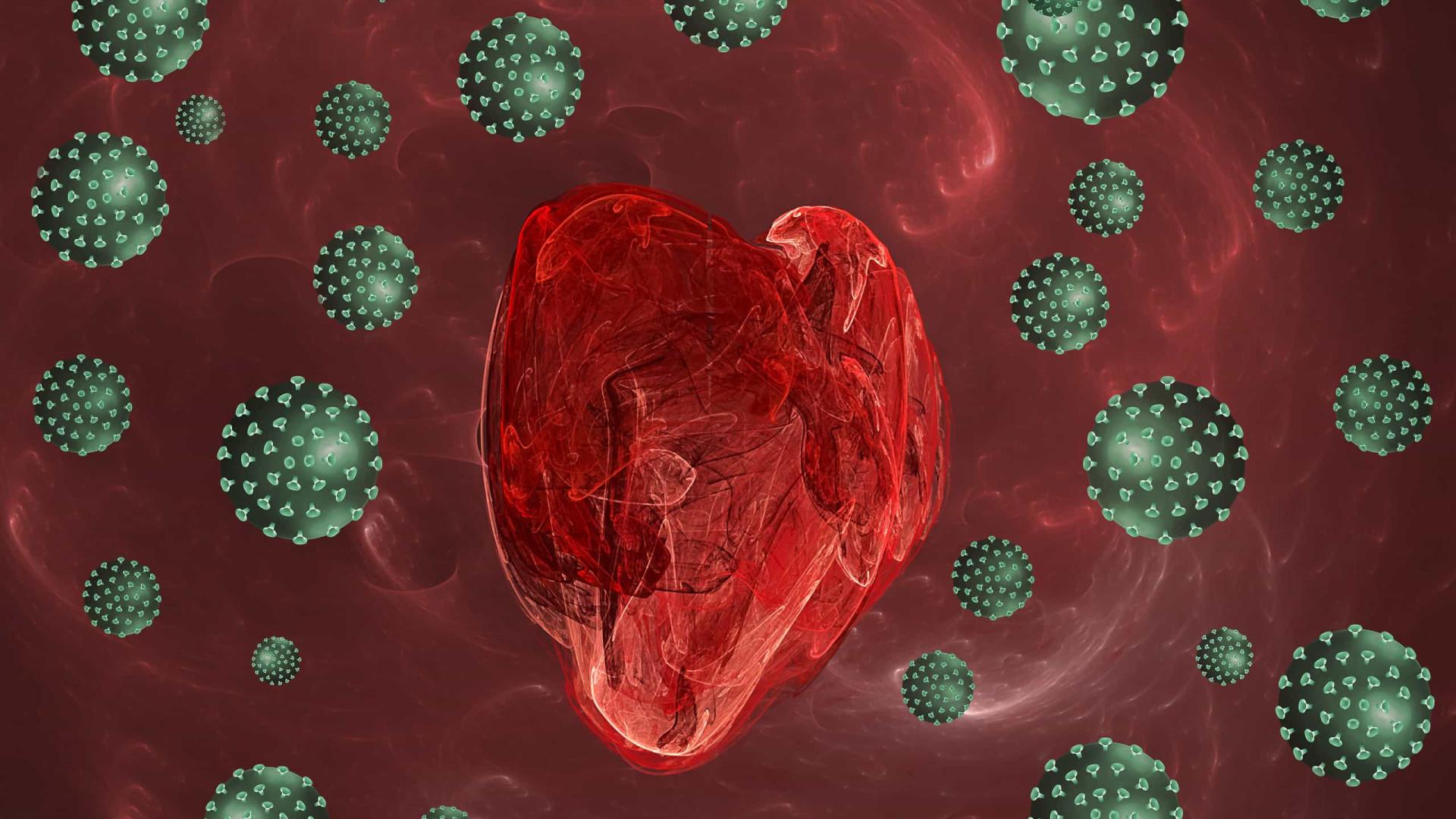 Coronavírus ataca, infecta e mata células musculares do coração