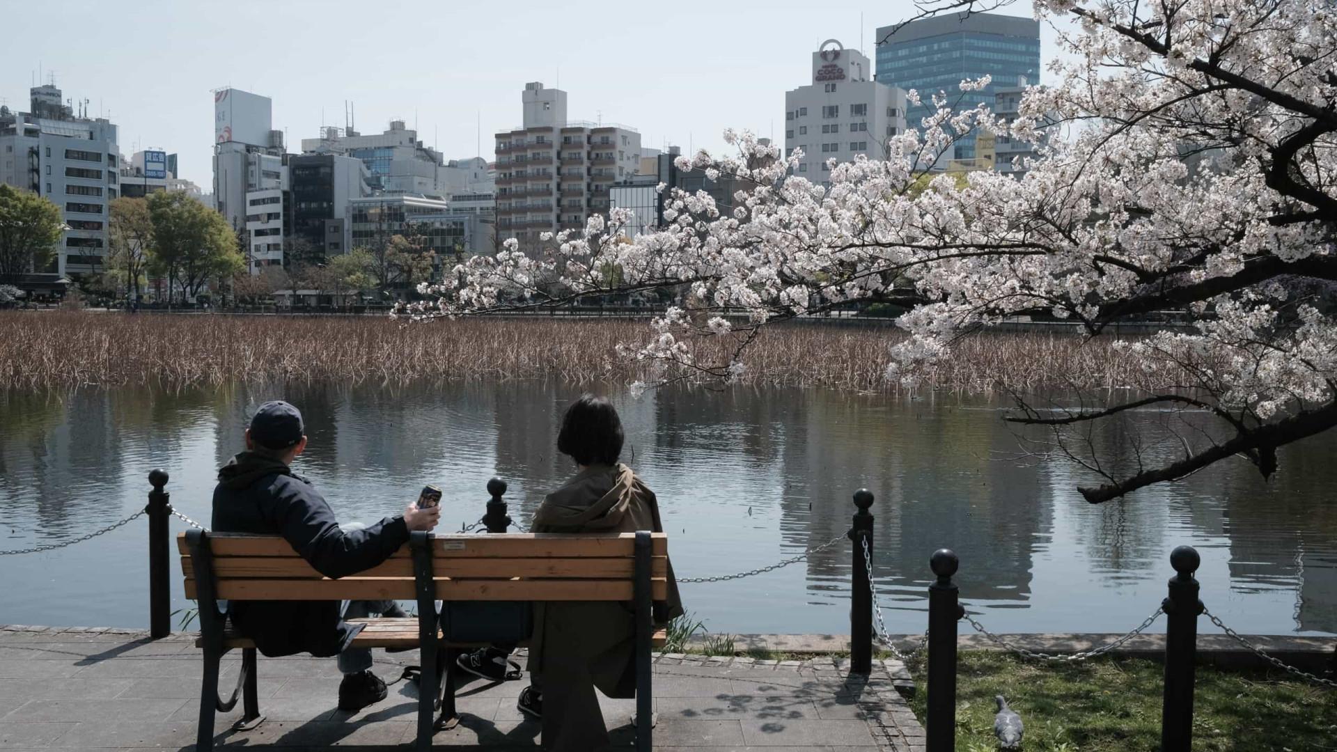 Há 1.200 anos que as cerejeiras não floresciam tão cedo no Japão