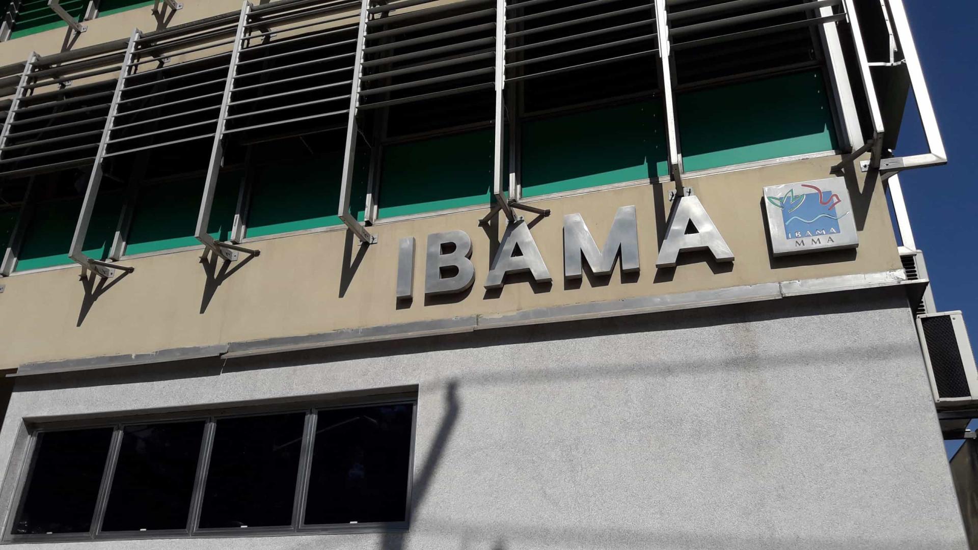 Ibama é autorizado a contratar temporariamente 1.659 profissionais