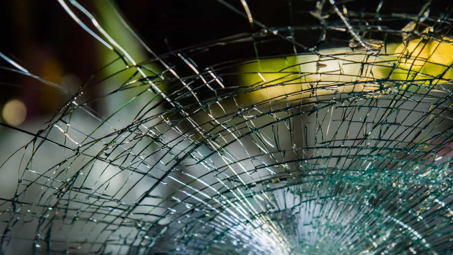 EUA: Idosa sobrevive após ser atingida na cabeça por tartaruga 'voadora'