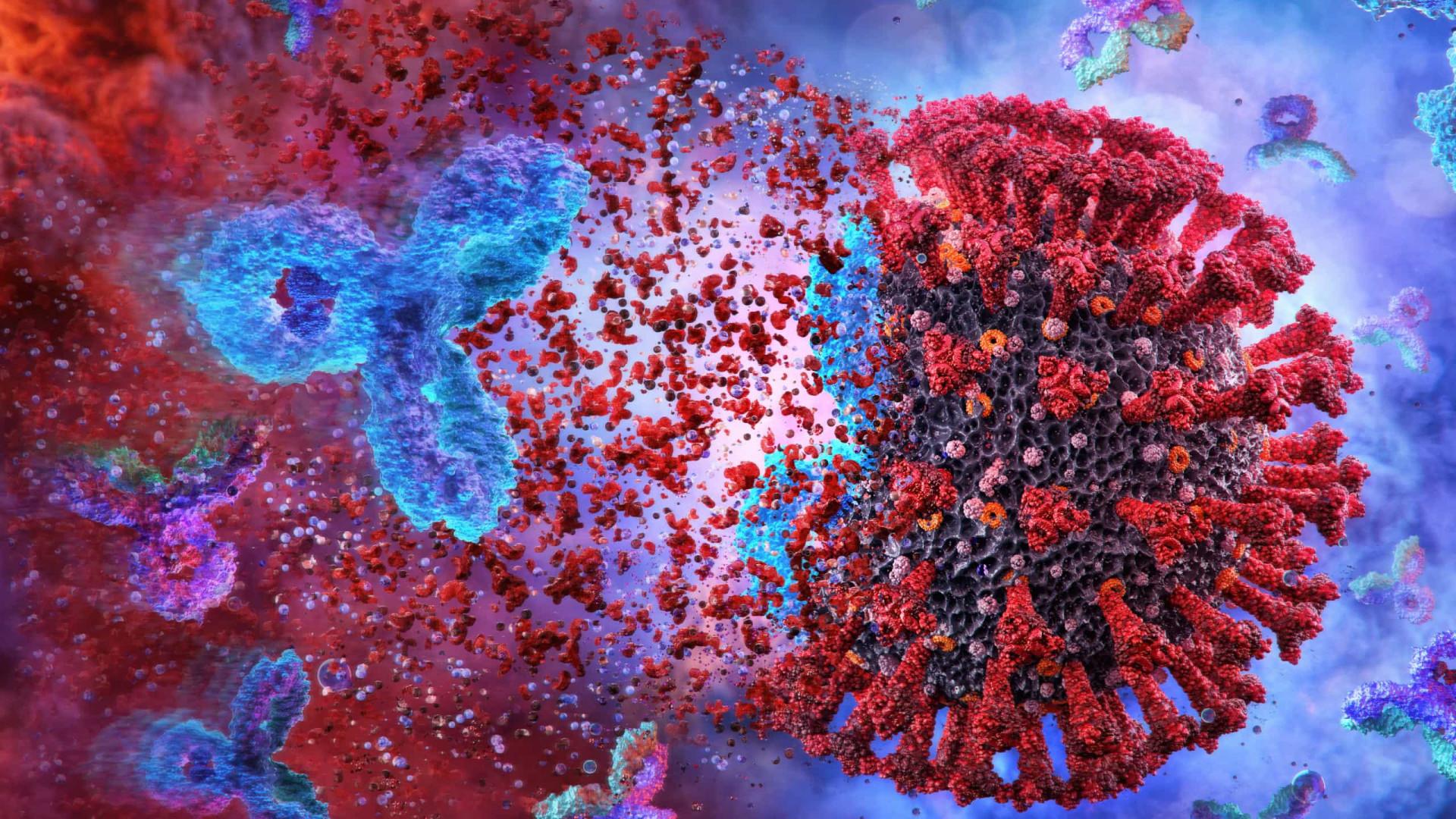 """Estudo: Anticorpos resultantes de Covid leve podem durar """"toda a vida"""""""