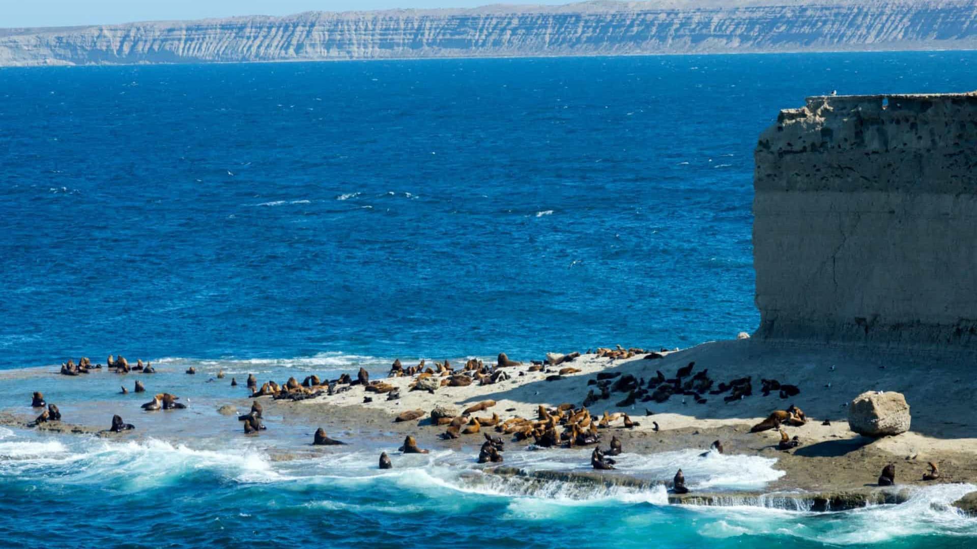 Confira os patrimônios mundias da UNESCO que ficam na América do Sul. O Brasil tem mais de 20!
