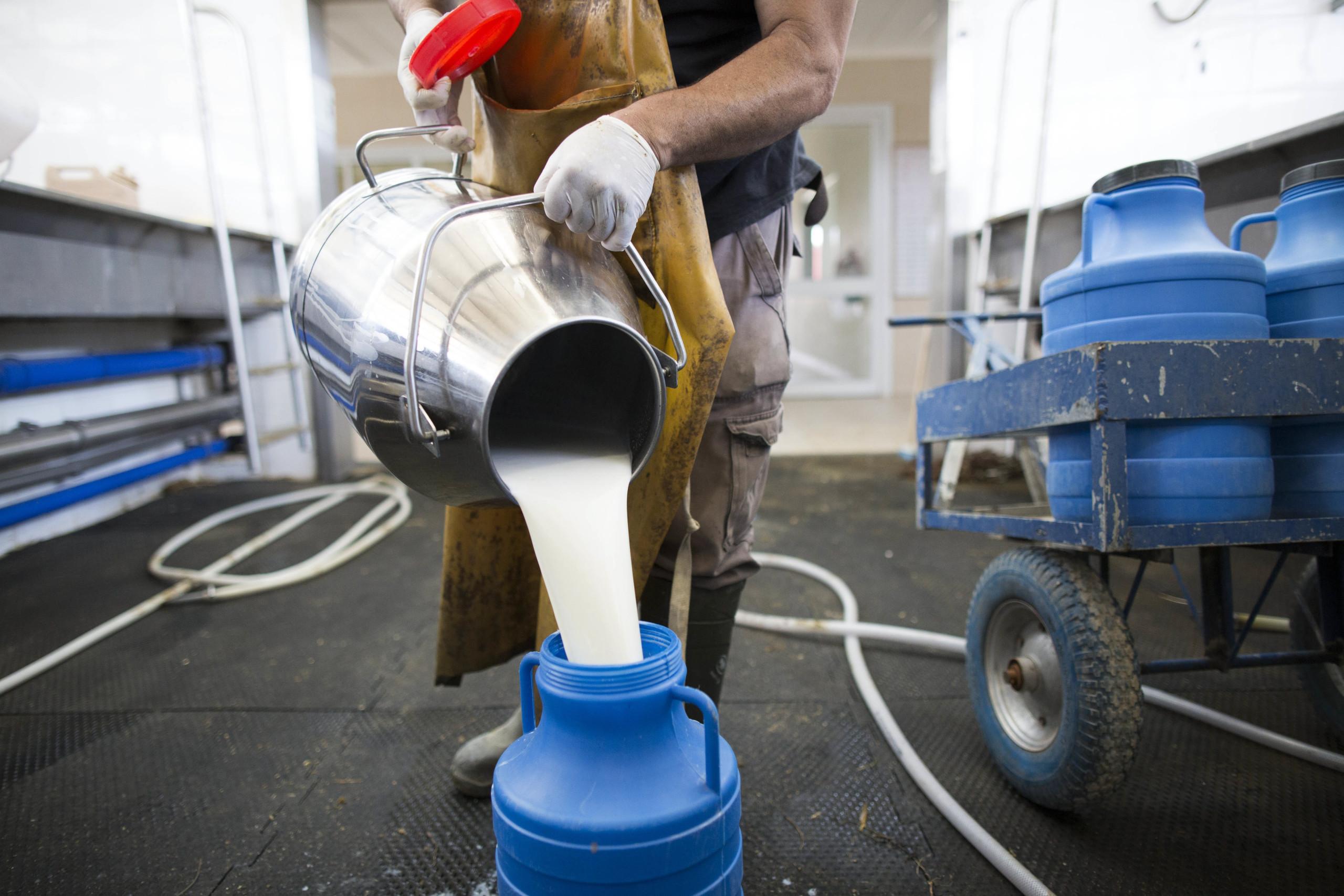 Portugal negocia com Brasil venda de leite dos Açores