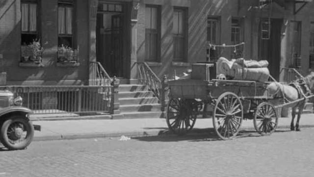 Yale divulga 170 mil fotografias do passado nos EUA