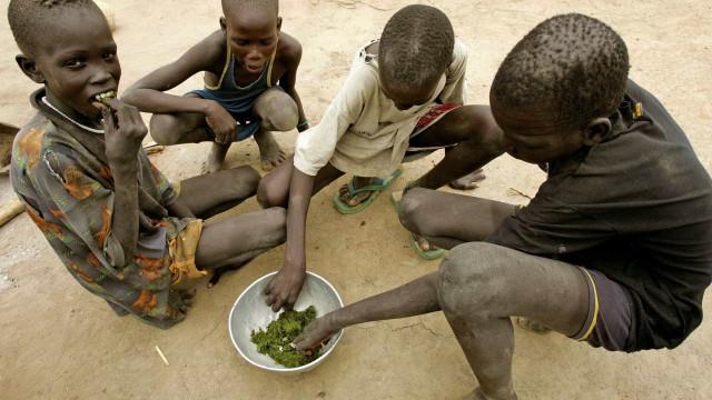UE e FAO anunciam combate à insegurança alimentar