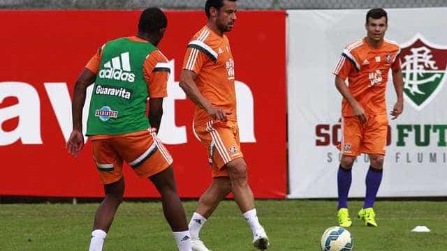 Fluminense busca vitória contra o Avaí para espantar risco de cair