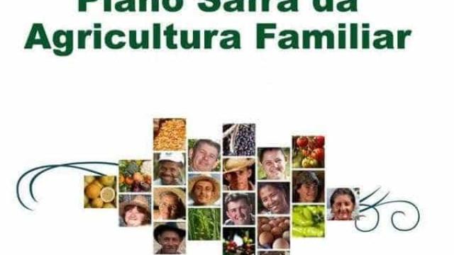 Plano Safra da Agricultura Familiar 2016/17 terá R$ 30 bi para financiamento