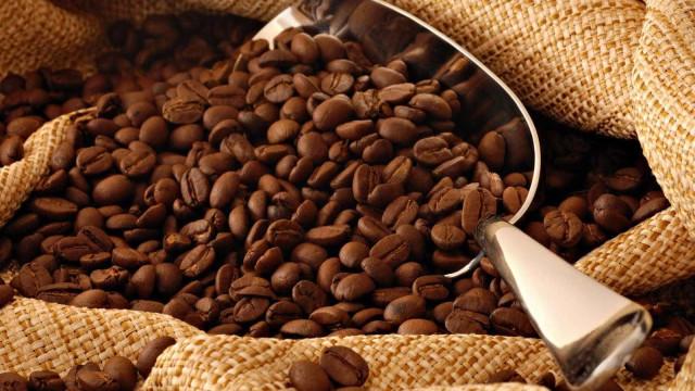Produtores de café estimam segunda maior safra da história
