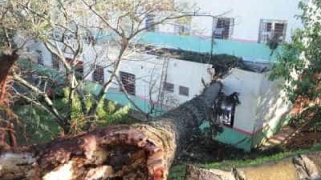 Vendavais matam quatro pessoas em Santa Catarina