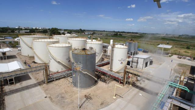 Leilão de biodiesel negocia 646 milhões de litros