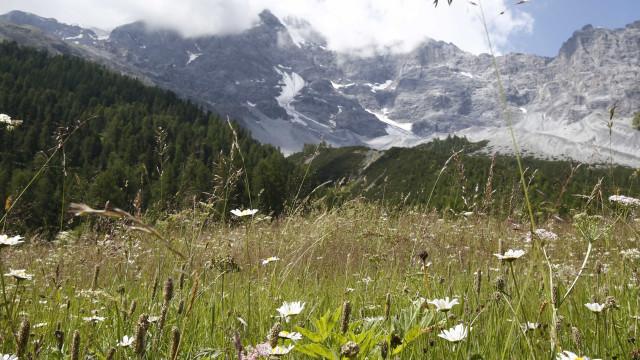 Monte Ortles na Itália começa a derreter após 7 mil anos