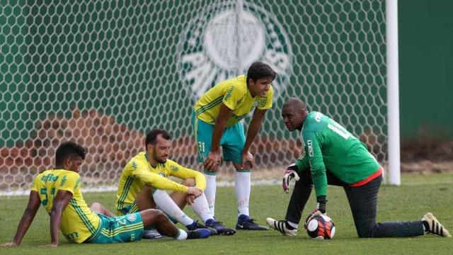 Palmeiras quer testar time da estreia da Libertadores na sexta-feira