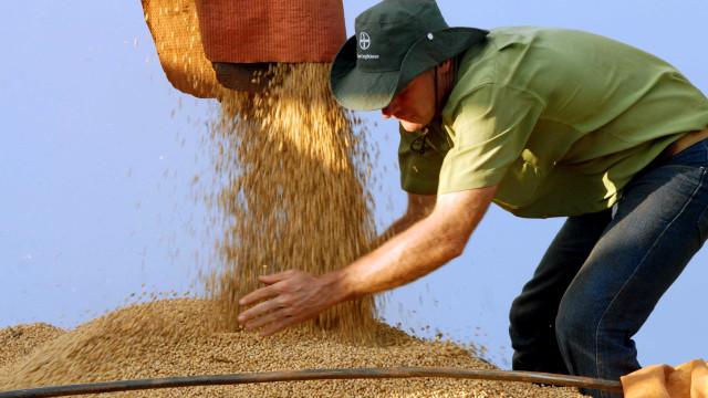 Mais de 67% das lavouras usam tecnologia na produção agrícola