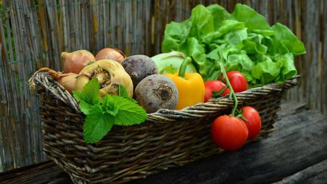 Quer aumentar a fertilidade? Coma frutas e vegetais