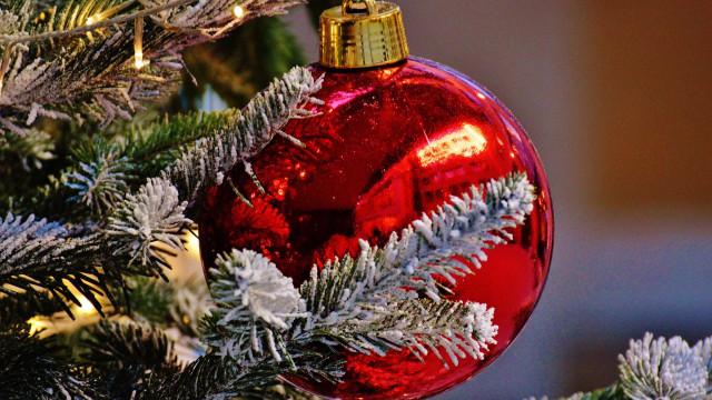 Procon-SP orienta consumidores para compras de Natal