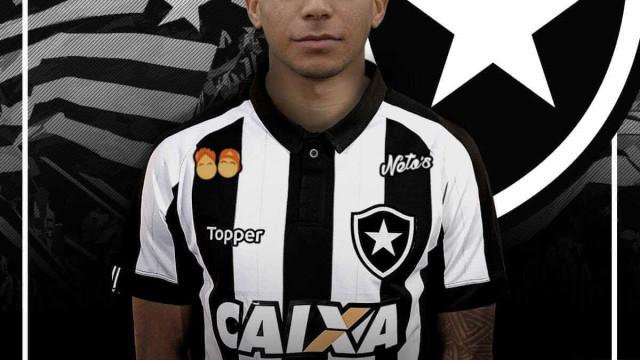 Botafogo supera assédio do exterior e fecha com destaque do Paraná