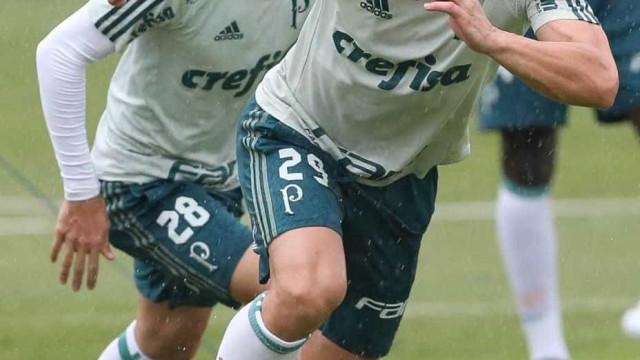 Palmeiras x Novorizontino é 1º confronto definido das quartas