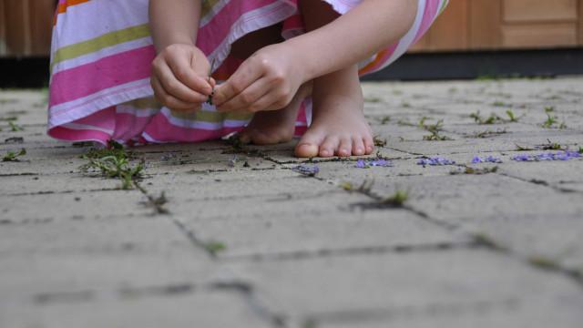 Menina de 4 anos é morta por bala perdida enquanto brincava na calçada