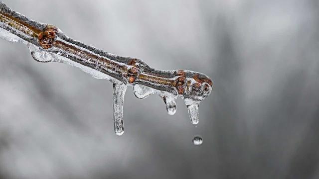 Cidades gaúchas registram temperatura negativa e geada