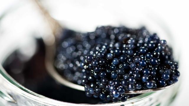 Caviar: 5 curiosidades que você precisa saber