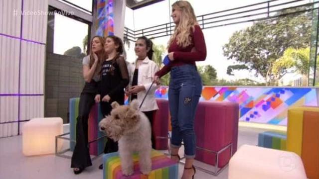 Crianças revelam que cachorro leva anestesia e Globo manda desmentir