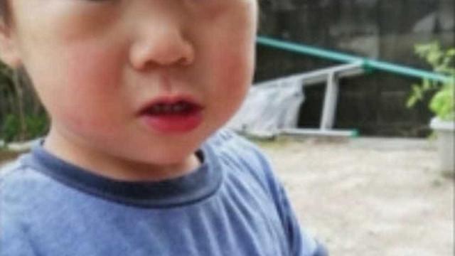 Perdido há 3 dias, menino de 2 anos é encontrado em bosque no Japão