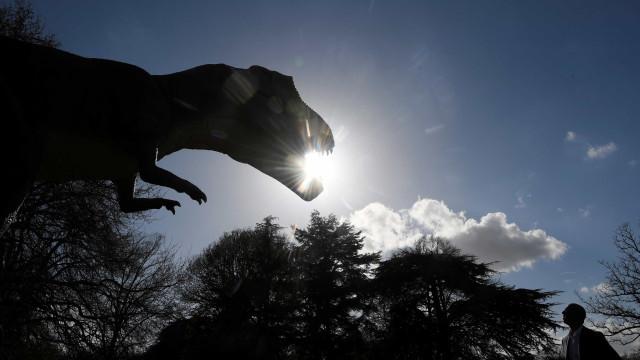 Identificado pterossauro raro que viveu há 200 milhões de anos