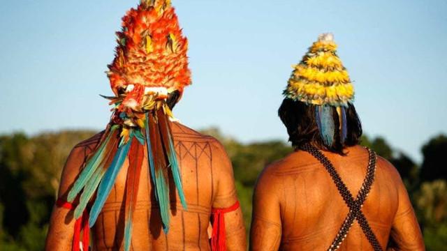 Com microfone e cocar, índios receitam remédios naturais na praça da Sé
