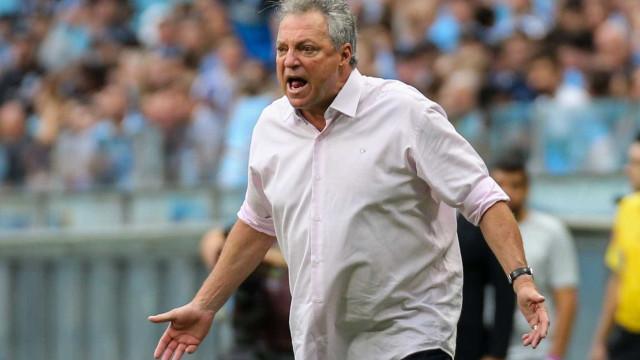 Abel Braga pode assumir o Flamengo em 2019